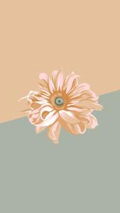 cute flower backgrounds