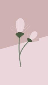 aesthetic flower backgrounds