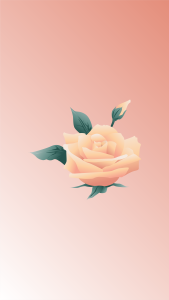 flower backgrounds for iphone