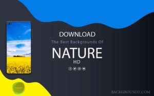 The Best 44 Nature backgrounds For Phones