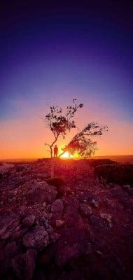 beautiful Socotra Island Natural Backgrounds