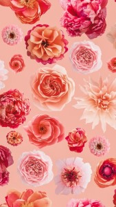 The Best Natural Flower wallpapers