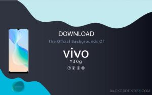 Best Official Vivo Y30G Wallpapers