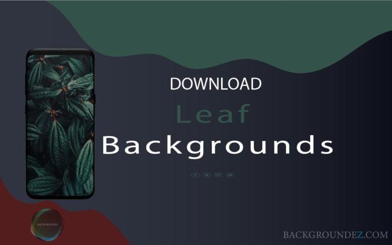 Leaf Backgrounds |