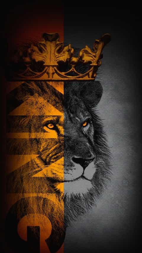 lion king wallpapers 4k